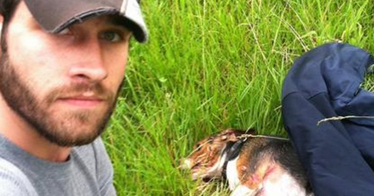 A Dog Was Hit At 70 MPH & Left Behind, But Then An Iraq War Veteran Pulled Over